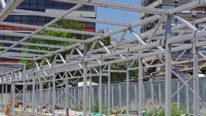 steel columns